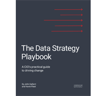c25-data-strategy-playbook-3422