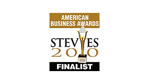 stevie-awards-american-business-awards-2010-informatica-finalists.jpg